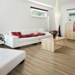 Vitromex for Modern Spaces with Light Wood Coffee Table