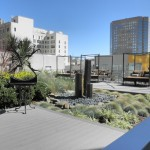 Watermark Apartments for Asian Patio with Cactus