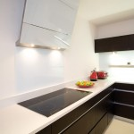 What is an Induction Cooktop for Contemporary Kitchen with Fruit Bowl