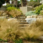 Xeriscape for Craftsman Landscape with Drought Tolerant