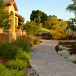 Xeriscape for Mediterranean Landscape with Shrubs