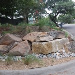 Xeriscape for Rustic Landscape with Natural Drainage