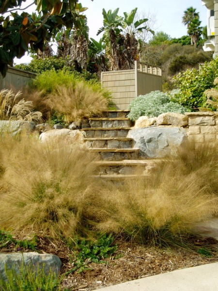 Xeriscaping for Craftsman Landscape with Boulder
